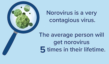 Graphic with text: Norovirus is a very contagious virus. The Average person will get norovirus five times in their lifetime.