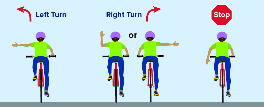 Cyclist demonstrates proper hand signals for left turns, right turns, and stops.