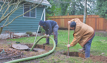Two septic system professionals digging in a backyard with shovels to work on a septic system.