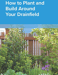 Septic drainfield landscaping