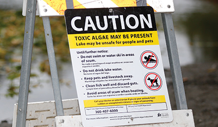 Toxic Algae Caution Sign, toxic algae may be present, lake may be unsafe for people and pets,